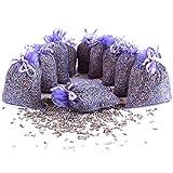 Quertee 10 x Lavendelsäckchen Mottenschutz als Duftsäckchen mit französischen Lavendel zum Entspannen und Schlafen - Mottenschutz für Kleiderschrank (10 x 10 g)